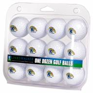 Kent State Golden Flashes Dozen Golf Balls