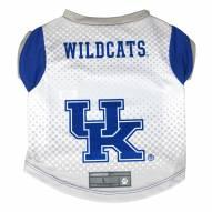 Kentucky Wildcats Dog Performance Tee