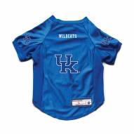 Kentucky Wildcats Stretch Dog Jersey