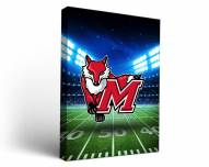 Marist Red Foxes Stadium Canvas Wall Art