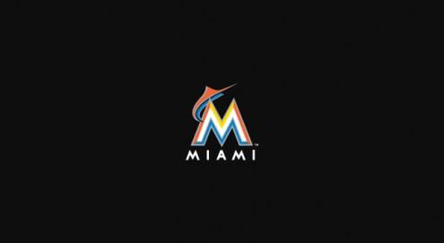 Florida Marlins MLB Team Logo Billiard Cloth