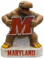 """Maryland """"Terp"""" Stone College Mascot"""