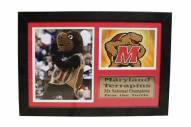 "Maryland Terrapins 12"" x 18"" Photo Stat Frame"