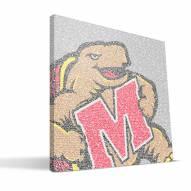 "Maryland Terrapins 16"" x 16"" Typo Canvas Print"