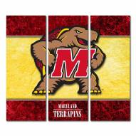 Maryland Terrapins Triptych Double Border Canvas Wall Art