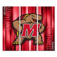 Maryland Terrapins Triptych Rush Canvas Wall Art