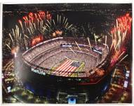 Metlife Stadium Large Poster