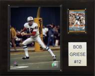 "Miami Dolphins Bob Griese 12 x 15"" Player Plaque"