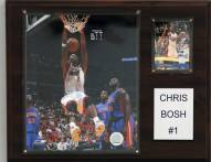 "Miami Heat Chris Bosh 12"" x 15"" Player Plaque"