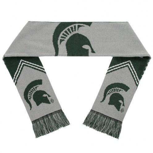 Michigan State Spartans Reversible Stripe Scarf