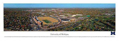 Michigan Wolverines Aerial Unframed Panorama