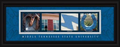 Middle Tennessee State Blue Raiders Campus Letter Art