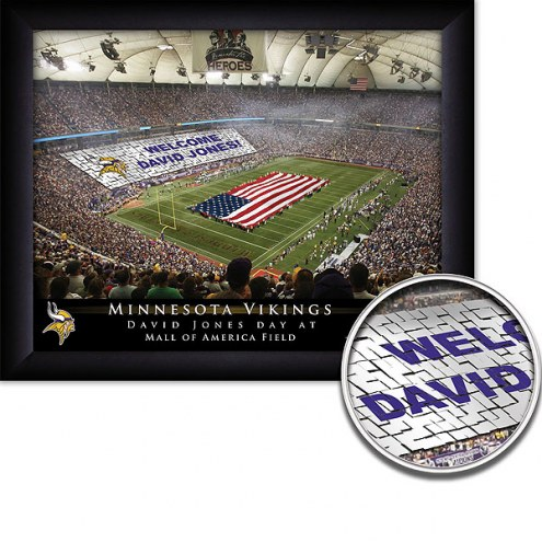 Minnesota Vikings 11 x 14 Personalized Framed Stadium Print
