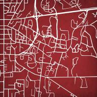 Mississippi State Bulldogs Campus Map Print