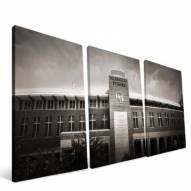 "Missouri Tigers 24"" x 48"" Stadium Canvas Print"