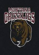Montana Grizzlies College Team Spirit Area Rug