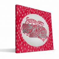 "Nebraska Cornhuskers 12"" x 12"" Born a Fan Canvas Print"