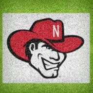 Nebraska Cornhuskers DIY Lawn Stencil Kit