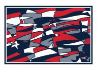 New England Patriots 3' x 5' Tapestry Rug