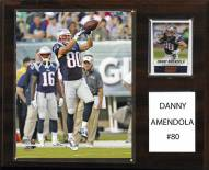 "New England Patriots Danny Amendola 12"" x 15"" Player Plaque"