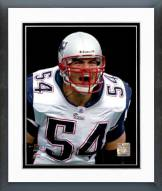 New England Patriots Tedy Bruschi Action Framed Photo