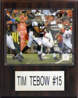 """New York Jets Tim Tebow 12 x 15"""" Player Plaque"""