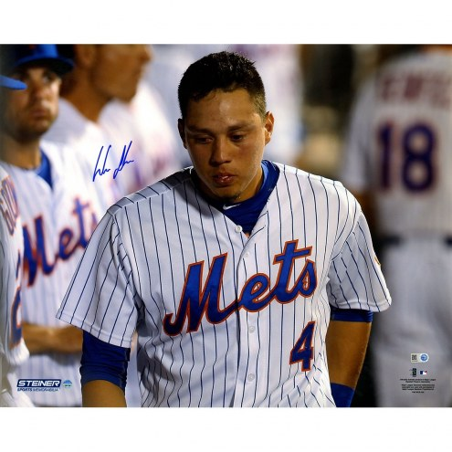 New York Mets Wilmer Flores Signed Citi Field 16 x 20 Photo