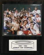"New York Rangers 12"" x 15"" 1994 Stanley Cup Champions Plaque"