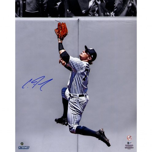 New York Yankees Clint Frazier Signed Catch at the Wall 16 x 20 Photo