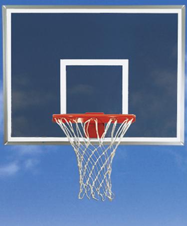 Bison Smoked Acrylic Basketball Backboard and Goal