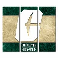 North Carolina Charlotte 49ers Triptych Double Border Canvas Wall Art