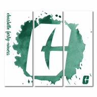 North Carolina Charlotte 49ers Triptych Watercolor Canvas Wall Art