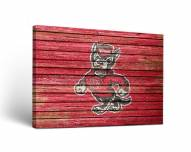 North Carolina State Wolfpack Weathered Canvas Wall Art