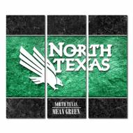 North Texas Mean Green Triptych Double Border Canvas Wall Art