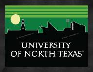 North Texas Mean Green Uscape Wall Decor