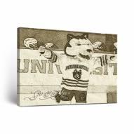 Northeastern Huskies Sketch Canvas Wall Art