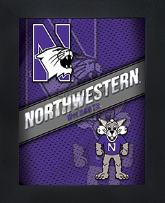 Northwestern Wildcats Framed 3D Wall Art
