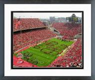 Ohio State Buckeyes Buckeyes Framed Photo