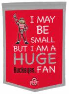 Ohio State Buckeyes Lil Fan Traditions Banner