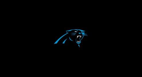 Carolina Panthers NFL Team Logo Billiard Cloth