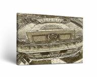 Penn State Nittany Lions Landscape Canvas Wall Art