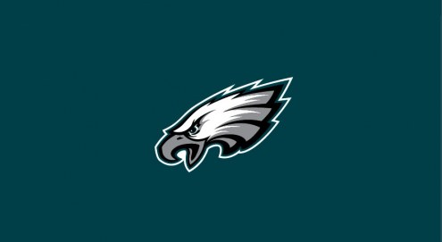 Philadelphia Eagles NFL Team Logo Billiard Cloth