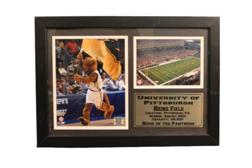 "Pittsburgh Panthers 12"" x 18"" Photo Stat Frame"