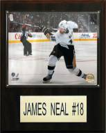 """Pittsburgh Penguins James Neal 12"""" x 15"""" Player Plaque"""