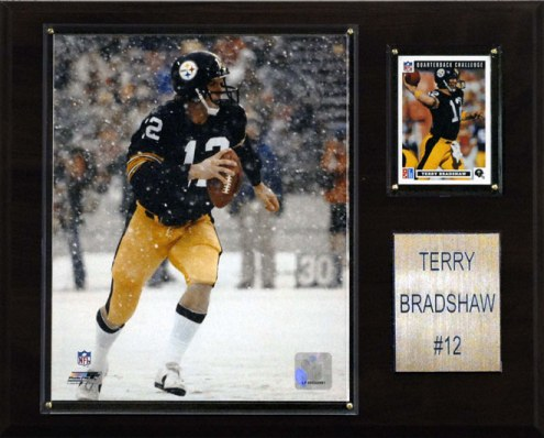 """Pittsburgh Steelers Terry Bradshaw 12"""" x 15"""" Career Stat Plaque"""