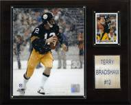 "Pittsburgh Steelers Terry Bradshaw 12 x 15"" Player Plaque"