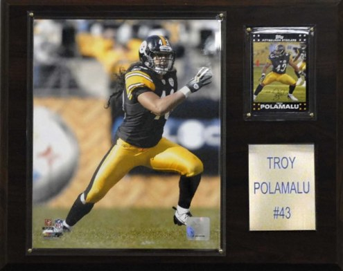 """Pittsburgh Steelers Troy Polamalu 12 x 15"""" Player Plaque"""