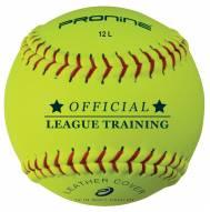 "Pro Nine 12"" Leather Indoor Practice Softballs - Dozen"