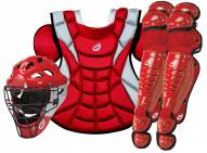 Pro Nine ProLine Youth Catcher's Gear Set - Ages 9-12