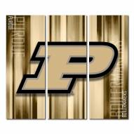 Purdue Boilermakers Triptych Rush Canvas Wall Art